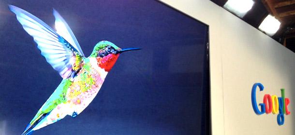 Google Hummingbird Google HummingBird ~ Update Terbaru Dari Mesin Telusur Google