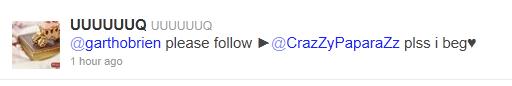 meminta-minta-twitter-followers