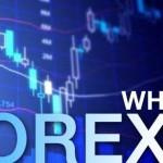 Apa itu Forex: Pengertian Forex, Fungsi, dan Pelaku Dalam Pasar Forex