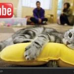 Sosok 3 Serangkai Di Balik Kesuksesan YouTube