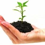 4 Penyebab Bisnis Online Anda Sulit Berkembang