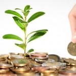 Cara Mudah Investasi Reksadana yang Menguntungkan untuk Pemula