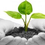 Tips Untuk Memajukan Startup Pada Situasi Yang Sulit