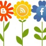 Perhatikan 5 Hal Penting Ini Saat Mengunggah Konten Gambar ke Media Sosial