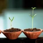 Tips Memilih Nama Startup Bisnis yang Tepat