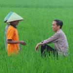 Tips Sukses Berwirausaha Ala Presiden Jokowi