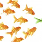 Lakukan 7 Hal Ini Untuk Membentuk Karakter Manajer Yang Baik