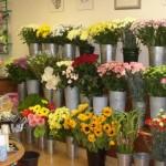 Menilik Peluang Emas Di Bidang Bisnis Bunga Potong
