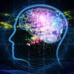 6 Rahasia Otak Yang Wajib Diketahui Para Marketer