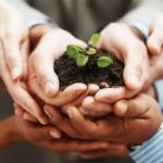 Mengenal Budaya Kerja yang Tepat untuk Startup, Seperti Apa itu?