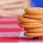 Contohlah Semut Dalam Bekerja Sama dan Tirulah Burung Dalam Membangun Jaringan Bisnis Anda