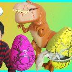 Fenomena Artis Cilik Rajai Platform Online Youtube