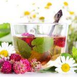 Menggaet Peluang Bisnis Herbal ala MLM, Apakah Terlalu Beresiko?