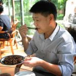 Usaha Budidaya Ternak Kecoa Bisa Hasilkan Uang Puluhan Juta per Bulan, Minat?